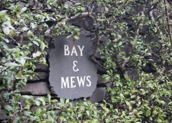 bay and mews wall sign (3)